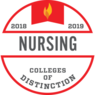 Best Nursing Degree Badge