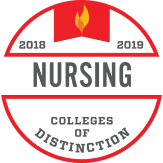 2018-19 Nursing Colleges of Distinction