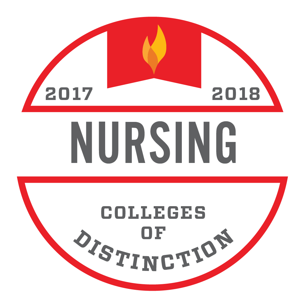 Nursing Online College Badge